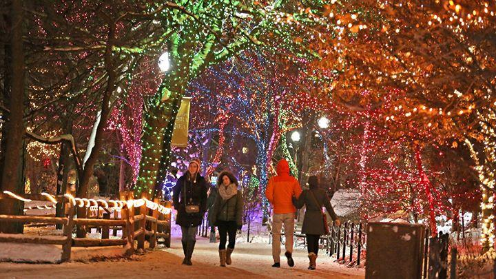 ZooLights Presented By ComEd and PowerShares QQQ 11/27/2015 4:25:00 PM