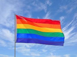 Mu Crew heads up to Toledo Pride 8/27/2016 8:30:00 AM